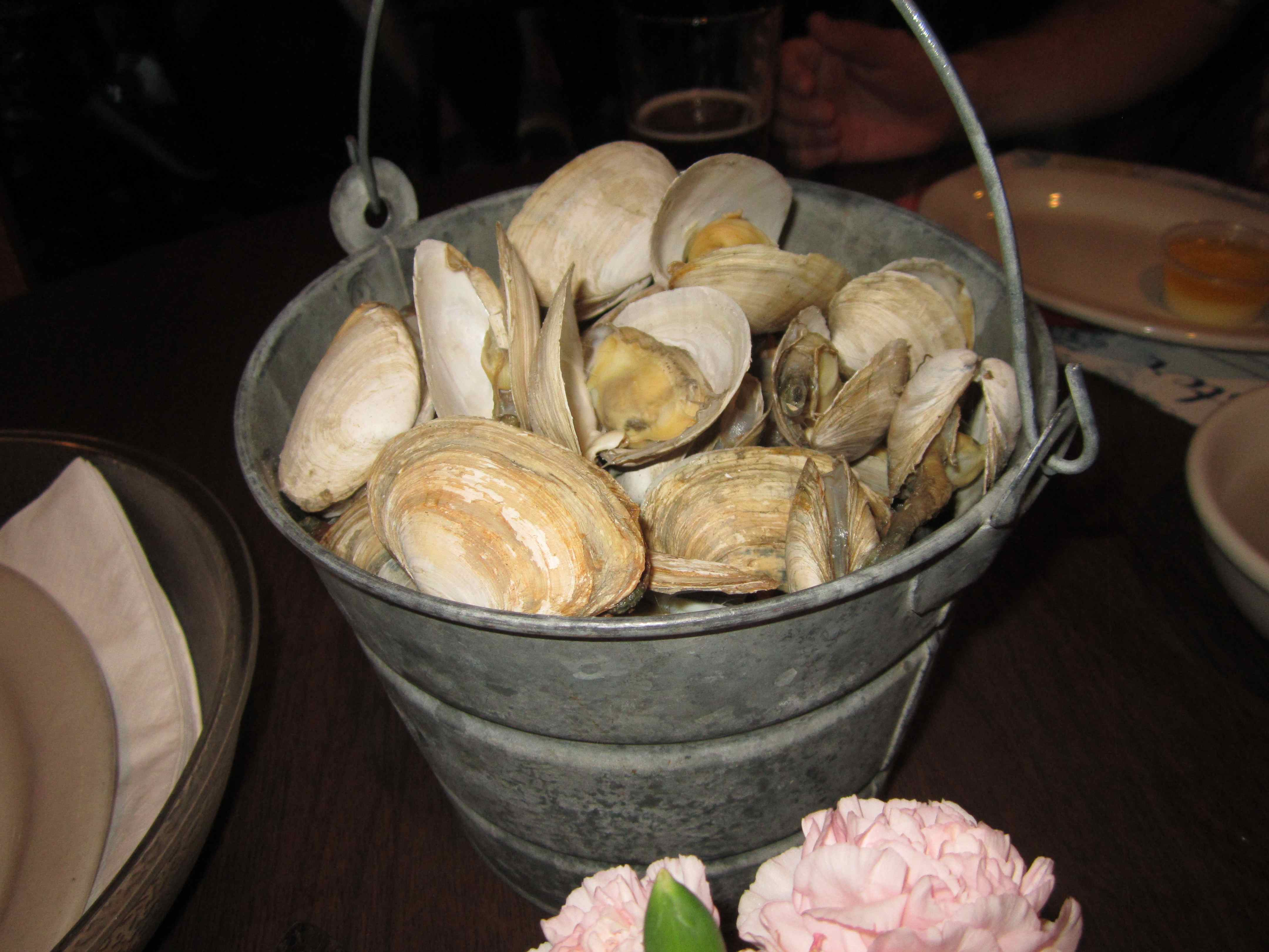 Oysters in Portland, Maine